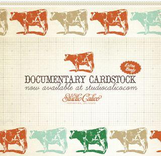 Documentarycardstock