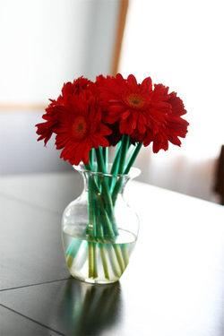0206flowers